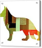 German Sheppard 2 Acrylic Print by Naxart Studio