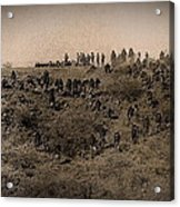 Geronimo's Band Of Warriors When He Surrendered To General Crook  September 4 1886 Acrylic Print