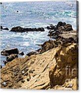 Gerstle Coastline Acrylic Print