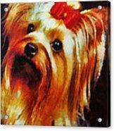 Gertrude Roo Acrylic Print