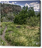 Get Off The Road And Enjoy Nature Acrylic Print