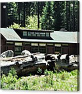 Giant Forest Museum Acrylic Print