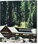 Giant Forest Museum Portrait Acrylic Print