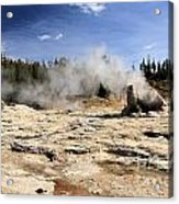Giant Geyser Group Acrylic Print