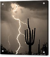Giant Saguaro Cactus Lightning Strike Sepia  Acrylic Print by James BO  Insogna