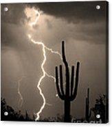 Giant Saguaro Cactus Lightning Strike Sepia  Acrylic Print