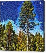 Giant Tree Abstract Acrylic Print
