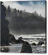Giants In The Fog Acrylic Print by Adam Jewell