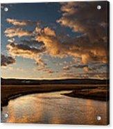 Gibbon River Yellowstone Acrylic Print