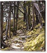 Gibraltar Rock Trail Wisconsin Acrylic Print