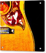 Gibson Hummingbird Acrylic Print