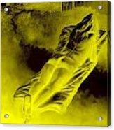 Giddy Fulfilment For Golden Beauty Acrylic Print