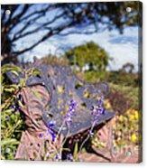 Gilcrease House Garden Flower Acrylic Print