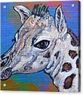 Giraffe - Baby Announcement Acrylic Print by Ella Kaye Dickey