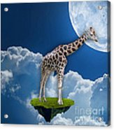 Giraffe Flying High Acrylic Print