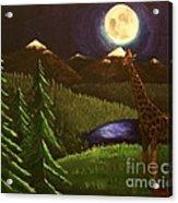 Giraffe In The Moonlight Acrylic Print
