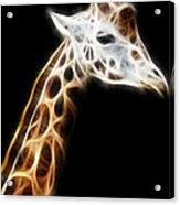 Giraffe Portrait Fractal Acrylic Print