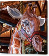 Giraffe Ride Acrylic Print