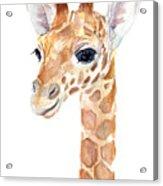Giraffe Watercolor Acrylic Print