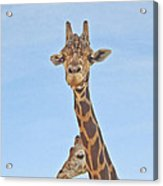 Behind Every Great Male Acrylic Print