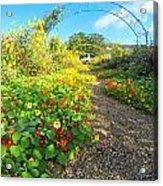 Giverny - Monet Acrylic Print