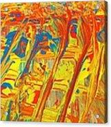 Gla Mour Acrylic Print