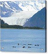 Glacier 10 Acrylic Print