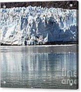 Glacier Bay National Park Acrylic Print