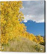 Glacier Fall Color Ridge Acrylic Print