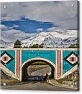 Glacier National Park East Gate Acrylic Print