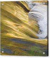 Glacier Stream Glacier National Park Acrylic Print