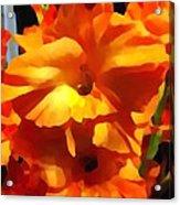 Gladiola Up Close Impression Acrylic Print