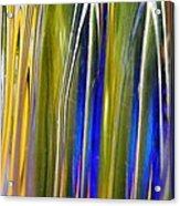Glass Abstract 747 Acrylic Print