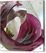 Glass Beauty Acrylic Print