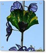 Glass Hollyhocks Acrylic Print