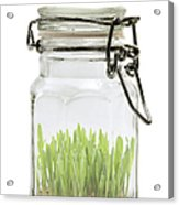 Glass Jar Acrylic Print