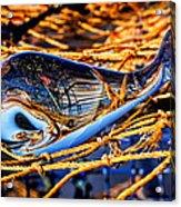 Glass Whale On Fishing Nets Acrylic Print