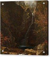 Glen Ellis Falls Acrylic Print