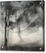 Glimpse Of Coastal Pines Acrylic Print by Carol Leigh