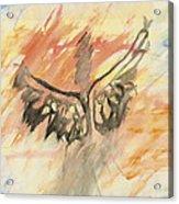 Glimpse Of The Angelic Acrylic Print
