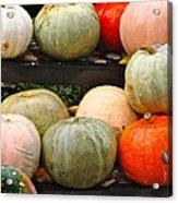 Glistening Gourds Acrylic Print