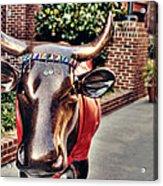 Glitter Bull Acrylic Print by Emily Kay