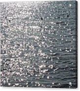 Glittering Acrylic Print