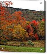 Glorious Fall Leaves Acrylic Print