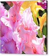 Glorious Summer Gladiolus Acrylic Print