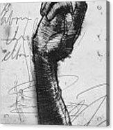 Glove Study Acrylic Print by H James Hoff
