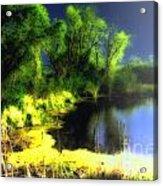 Glowing Pond On A Foggy Night Acrylic Print by Ann Almquist