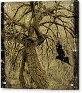 Gnarled And Twisted Tree With Crow Acrylic Print