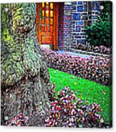 Gnarly Tree With Flowers Acrylic Print