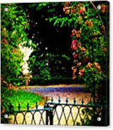 Go And Smell The Roses Acrylic Print